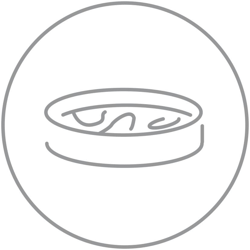dish-grey